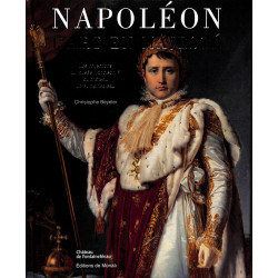 Napoléon, l'art en majesté