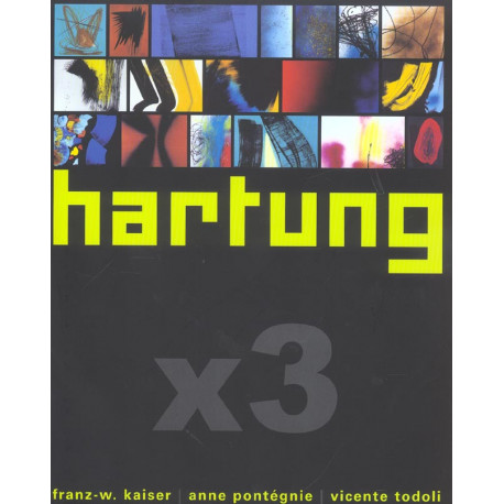 Hartung X3