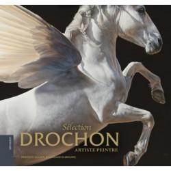 Drochon - artiste peintre