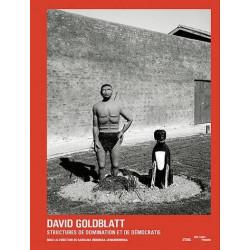 David Goldblatt - Structures, domination et démocratie