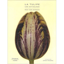 La tulipe. Une anthologie